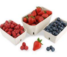 Behälter für Früchte
